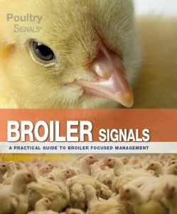 About Poultry Signals 3