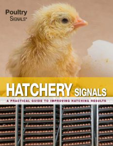 About Poultry Signals 5
