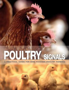 About Poultry Signals 7